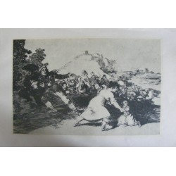 Art print, offset lithograph, Francisco de Goya w. DOCS